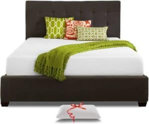 Live and Sleep Mattress for Murphy Bed