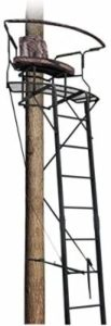 Big Dog Stadium Ladder Stands for Bowhunting
