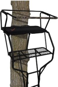 BIG GAME 2-Person Ladder Stands for Bowhunting