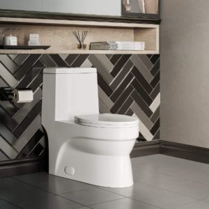 One Piece Elongated Toilet With Dual Flush