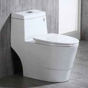 Dual Flush Toilet With Rectangle Button
