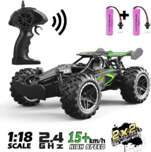 Water Resistant High Speed Remote Control Car
