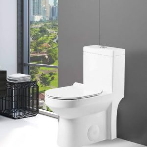 Dual Flush Toilet With Rough-In Design